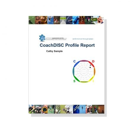 CoachDISC profile report